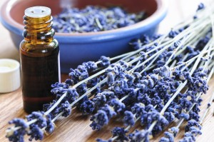 essential oils_hairblues