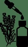 lavender-3898655_1280 (1)